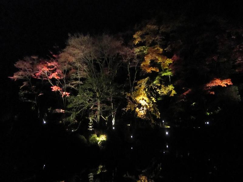 iluminacion-jardin-1